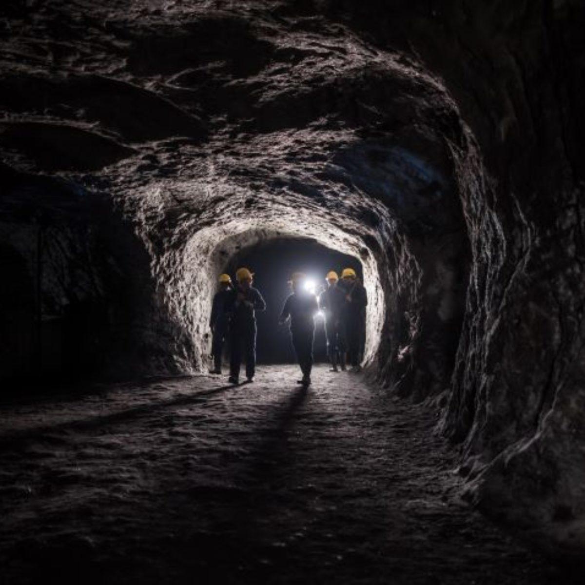 mining succession